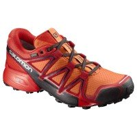 Salomon Speedcross Vario 2 GTX Laufschuhe orange